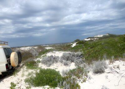 In den Sanddünen von Lancelin nördlich von Perth