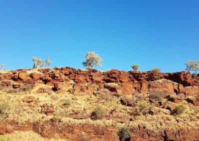 Typische Landschaft in Western Australien